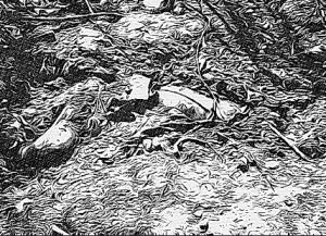 como pude me arrodillé y corrí la manta negra que cubría el cadáver semi enterrado